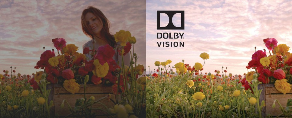 Dolby Vision example2